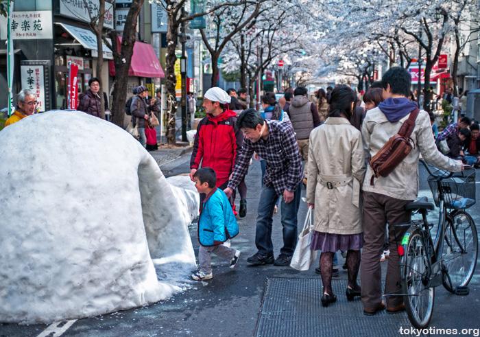 Tokyo igloo