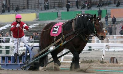 banei japanese horse racing