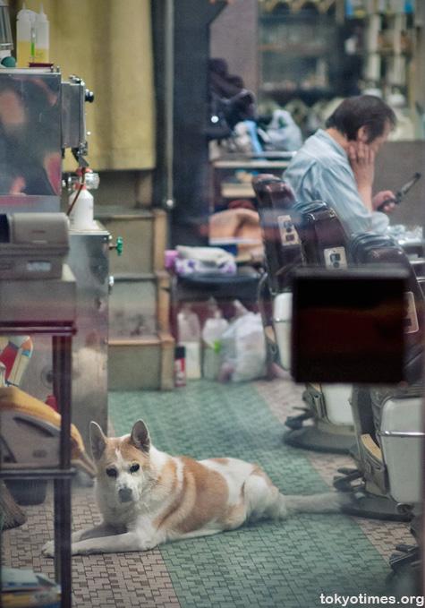 Tokyo barber and his dog