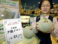 big_melons.jpg