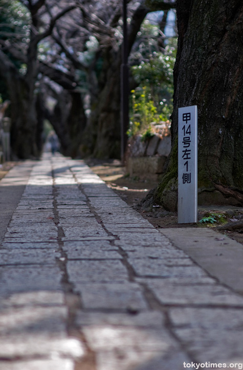 Tokyo cemetery
