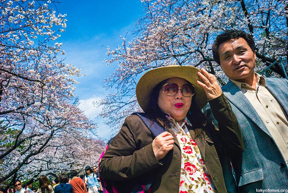 Cherry blossom smiles
