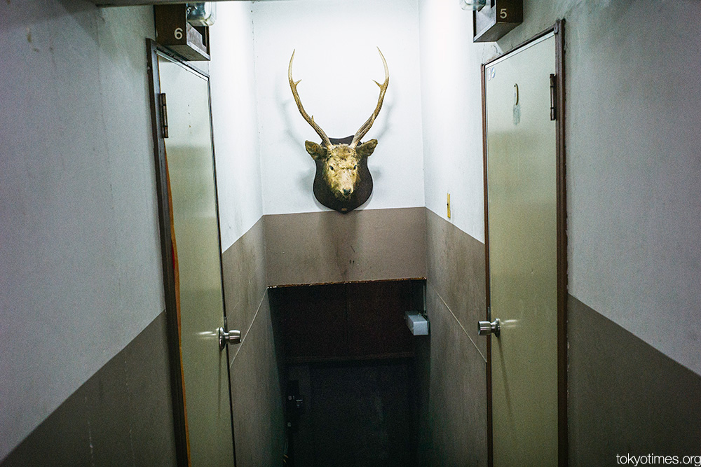 deer head in a Tokyo apartment building
