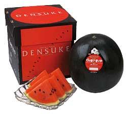 densuke melon