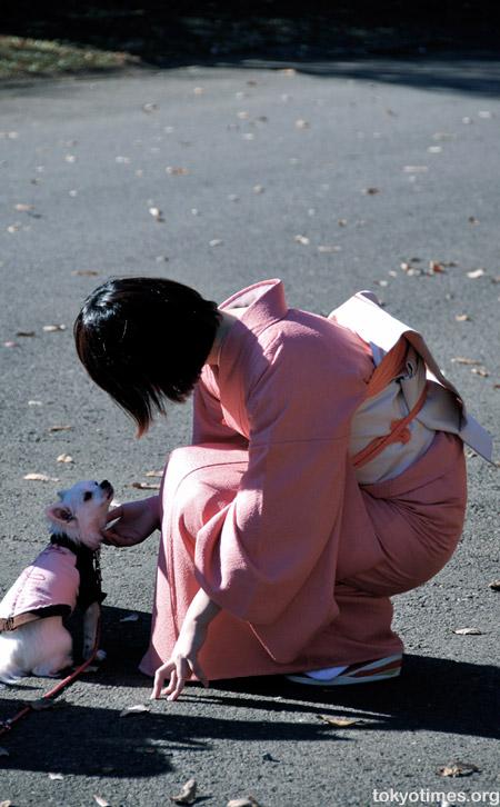 canine and kimono