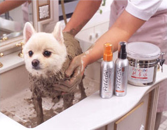 dog mud bath