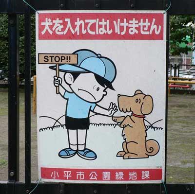 japanese dog