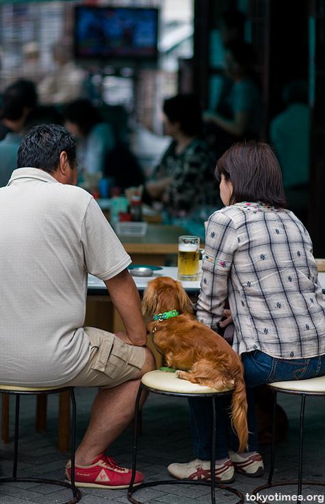 Japanese pet