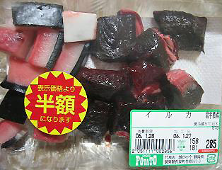 dolphin meat
