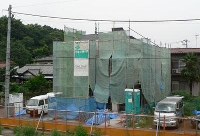 japanese erection