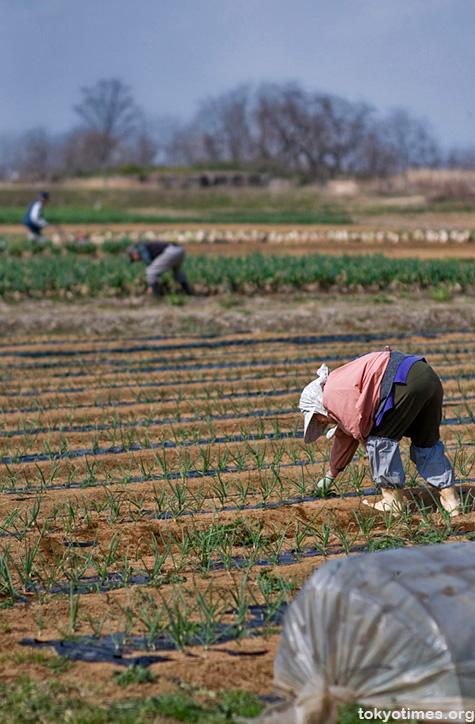 Tokyo farmers
