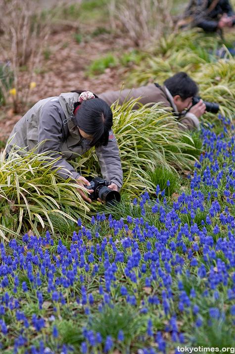 Japanese photographers