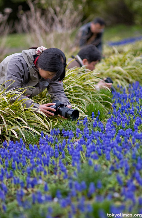 Japanese photographers