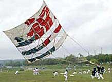 giant_kite.jpg