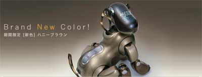 honey brown aibo