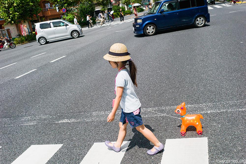 Japanese girl toy pet dog