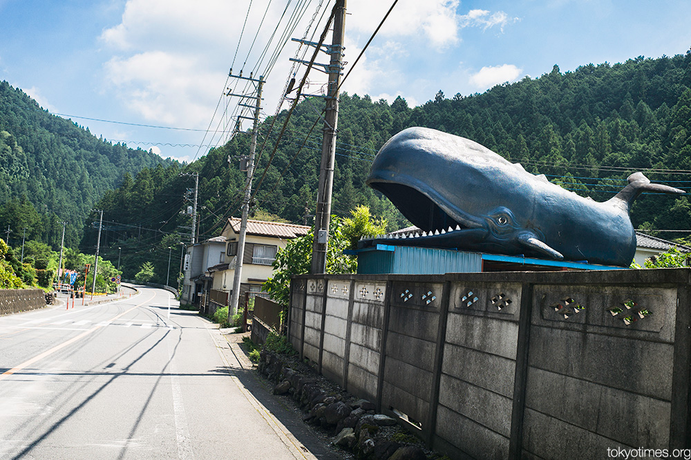 Japanese roadside whale