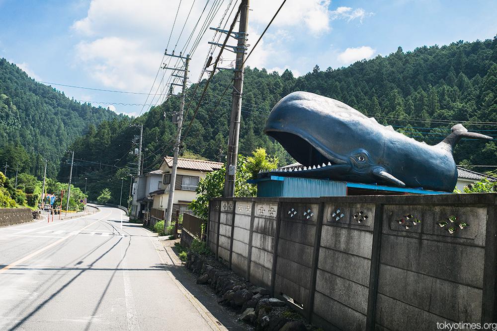 Japanese roadside whale