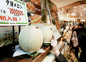lovely Japanese melons