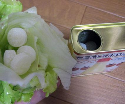 Japanese mayonnaise candy