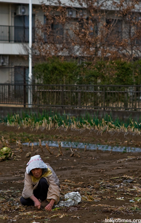 farming in Tokyo