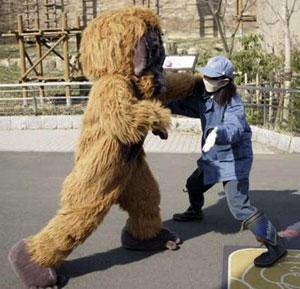 japanese zoo