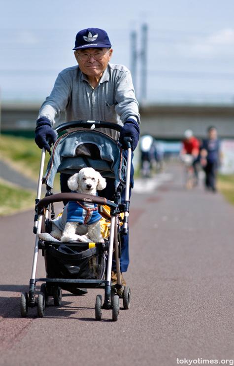 Japanese pet pushchair