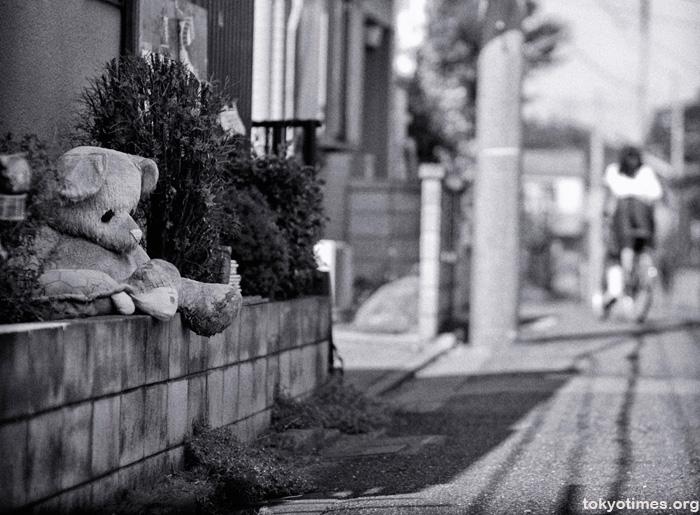 a sad Japanese teddy bear