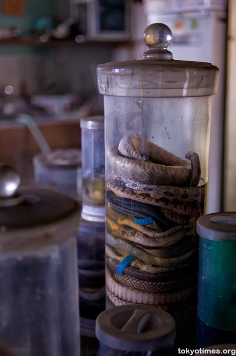 abandoned Japanese snake centre