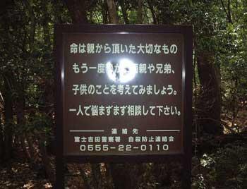 japan suicide forest