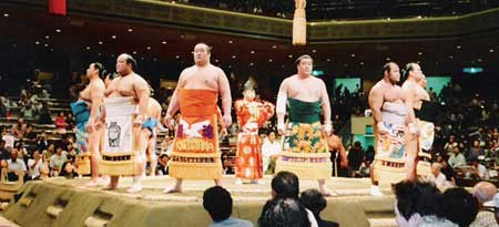 sumo_line_up.jpg