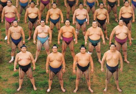 sumo picture