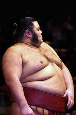takanotsuru sumo