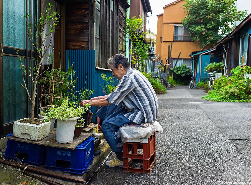 tokyo gardening