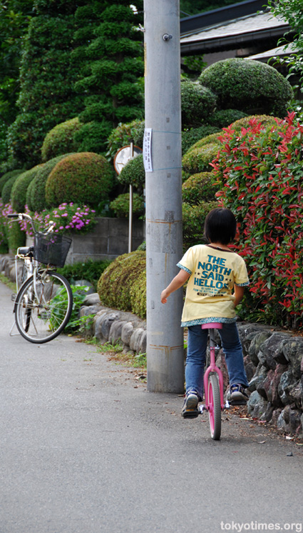Japanese unicycle