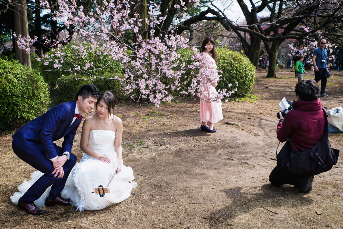 a cherry blossom wedding selfie