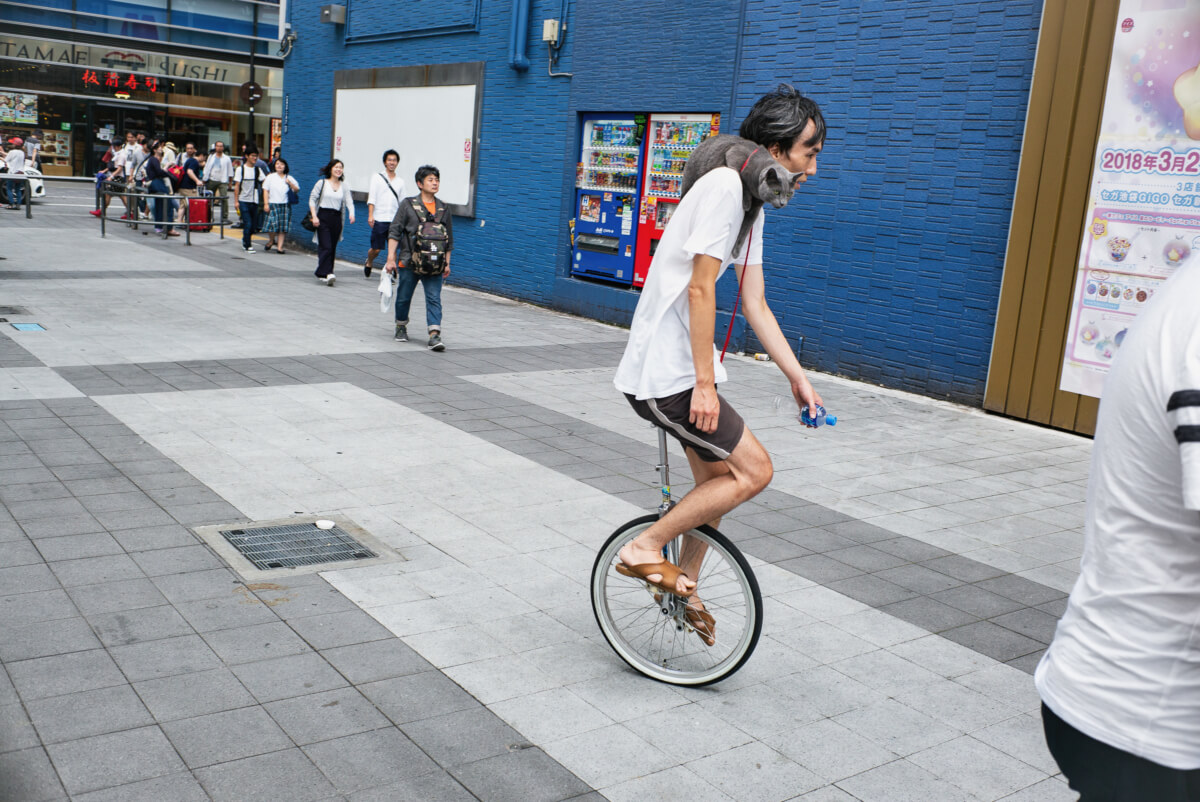 A unicyclist in Tokyo with a cat on his shoulder