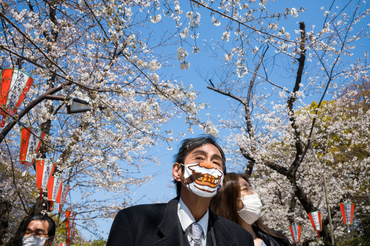 A boldly masked Tokyo salaryman under the blossoms