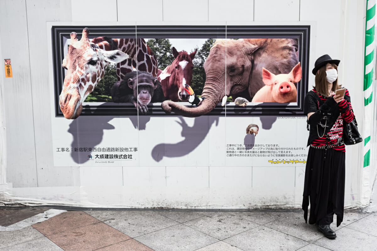 exotic animals on the streets of Tokyo