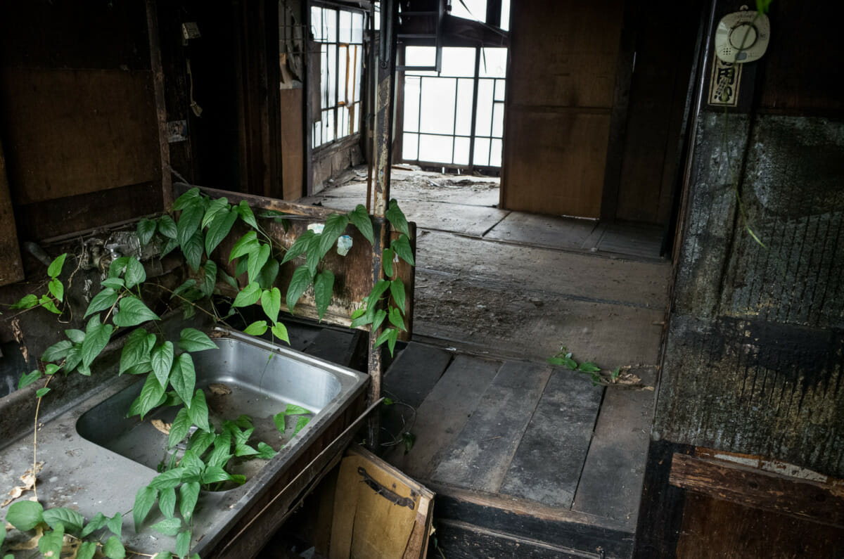 The life cycle of an old Tokyo house and its elderly owner