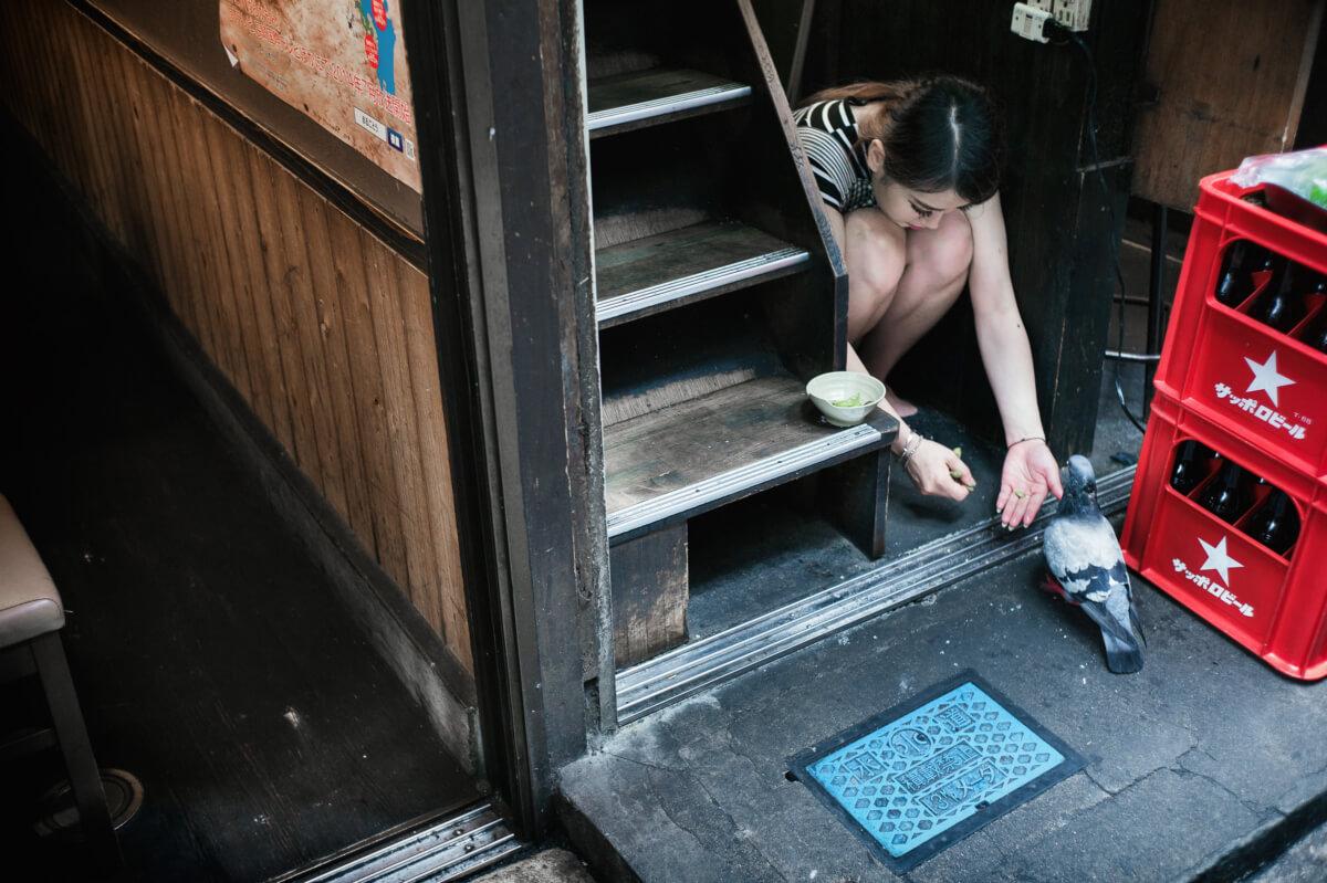 feeding a pigeon in a Tokyo alley