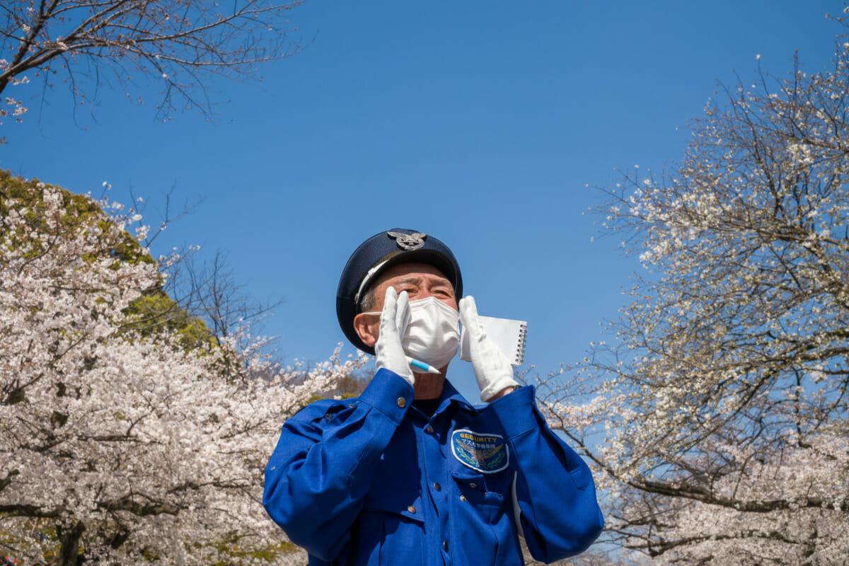 safety first Tokyo 2021 cherry blossom season