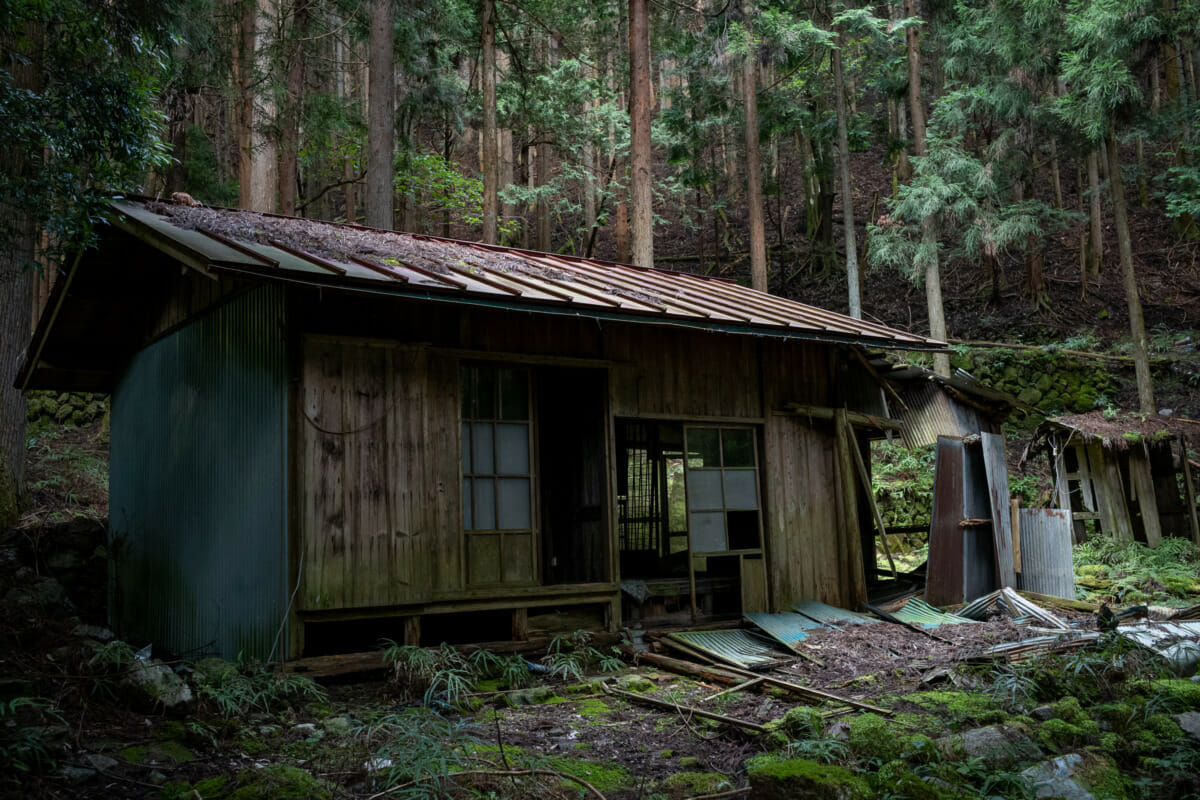 The silence and decay of an abandoned Japanese mountain village