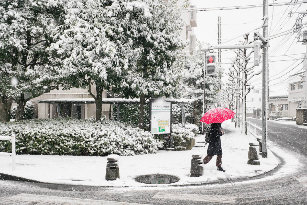 tokyo in the snow