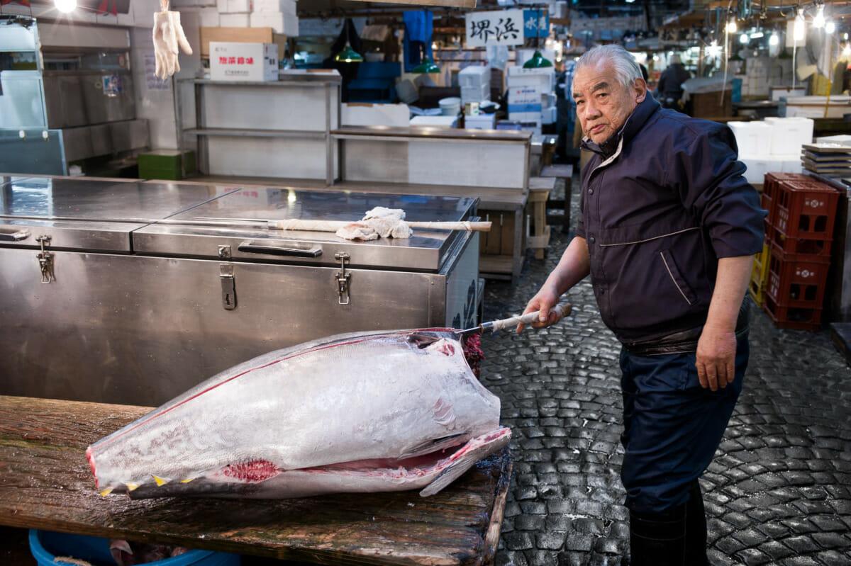 Tsukiji market tuna
